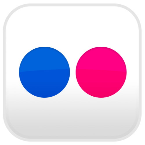 flickr logo-500x500